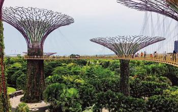 Tham quan khu vườn Gardens by The Bay